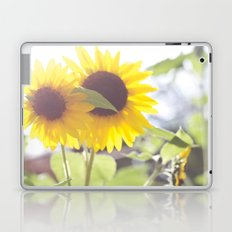 August Sunflower Laptop & iPad Skin