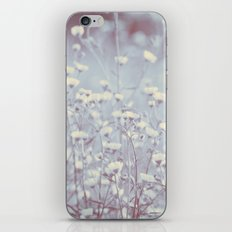 Wild Abandon -- Dreamy Fleabane Daisies in Lavender Gray Mist iPhone & iPod Skin