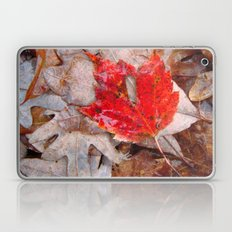 autumnal reverie 657 Laptop & iPad Skin