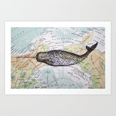 Narwhal in the Arctic Art Print
