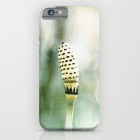 Cornwall iPhone 6 Slim Case