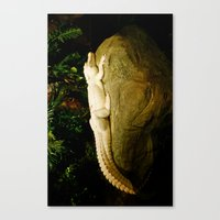 Canvas Print featuring Albino Alligator by Russ Ham