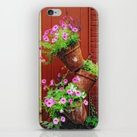 Potted Petunias iPhone & iPod Skin