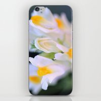 Darling Buds iPhone & iPod Skin