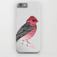 Scarlet Rosefinch iPhone 6 Slim Case