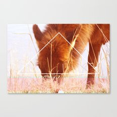 Wild Fire Within Canvas Print