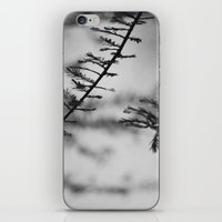 Nature In Abstract iPhone & iPod Skin
