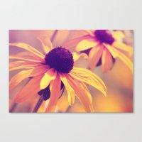 Yellow Flower - Rudbeckia Canvas Print