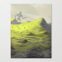 Looking For Something Canvas Print
