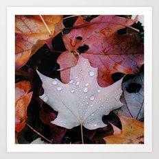 Sprinkle Leaf Art Print