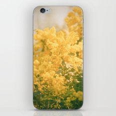 Puffs of Goldenrod iPhone & iPod Skin