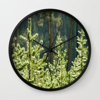 Young Lodgepole Pines Af… Wall Clock