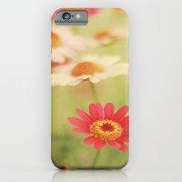 Daisy Love iPhone 6 Slim Case