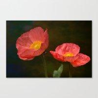 Spring Poppy Canvas Print