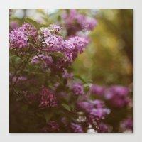 Lilac Daydream Canvas Print