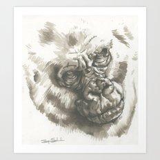 Gorilla Sketch Art Print