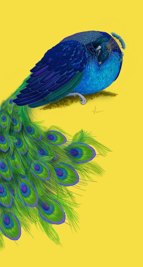 The Beauty That Sleeps - Vertical Peacock Painting Art Print