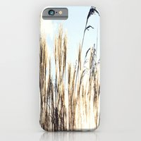 iPhone & iPod Case featuring sun setting on reeds by Danielle W