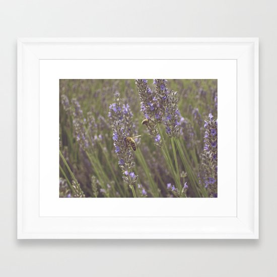 Beez Framed Art Print