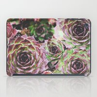 Hens and Chicks iPad Case