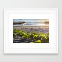 Follow Me To The Sea Framed Art Print