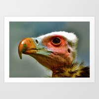 Ethel The Vulture Art Print