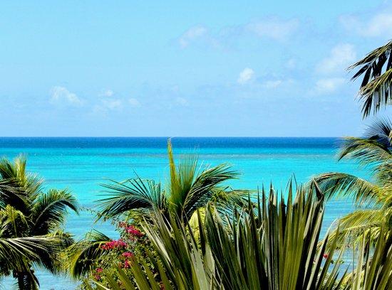 Wild Exotic Blue Paradise -Indian Ocean Seascape Art Print