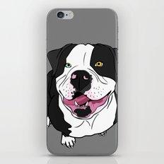 Bubba, the American Bulldog iPhone & iPod Skin