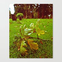 Canvas Print featuring Peaceful Autumn by Vorona Photography