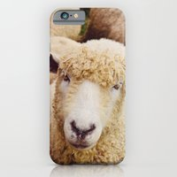 Cotswold Sheep iPhone 6 Slim Case