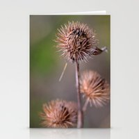 Thorn Heads Stationery Cards