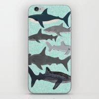 Sharks nature animal illustration texture print marine biologist sea life ocean Andrea Lauren iPhone & iPod Skin