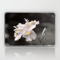 Flecks of Colour Laptop & iPad Skin