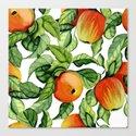 Ripe apples Canvas Print
