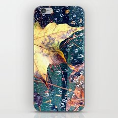 Fall in the Spider's Web iPhone & iPod Skin
