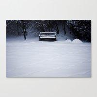 Snowy Solitude Canvas Print