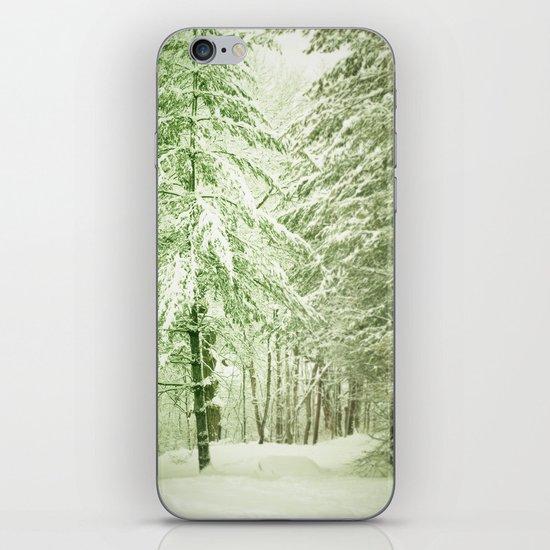 Winter Pine Trees iPhone & iPod Skin