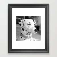 Spotty Dotty Dalmatian Dog Framed Art Print
