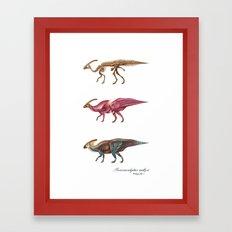 Parasaurolophus Anatomy Framed Art Print