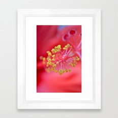 inside-hibiscus  Framed Art Print