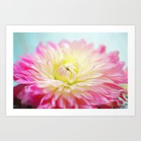painted dahlia Art Print