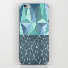 Nordic Combination 32 iPhone & iPod Skin