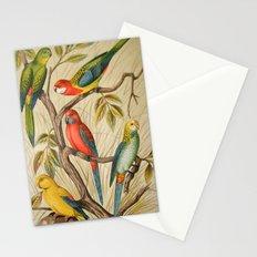Vintage parrots Stationery Cards