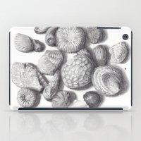Fossils iPad Case