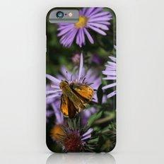 Prairie Life iPhone 6 Slim Case