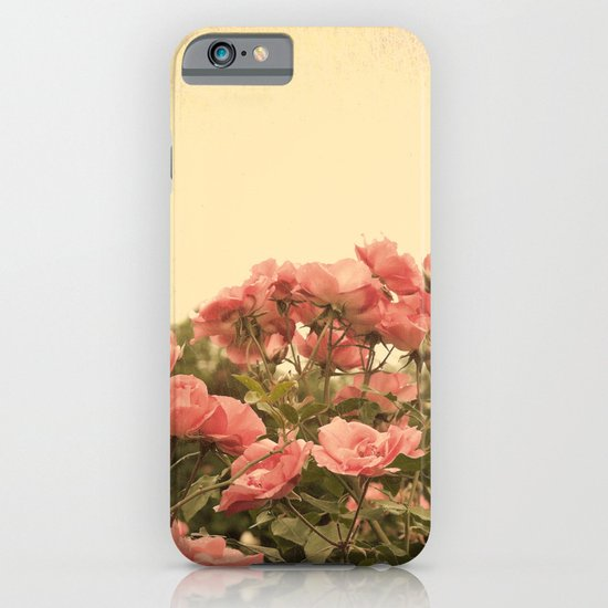 Roses in the garden (vintage flower photography) iPhone & iPod Case