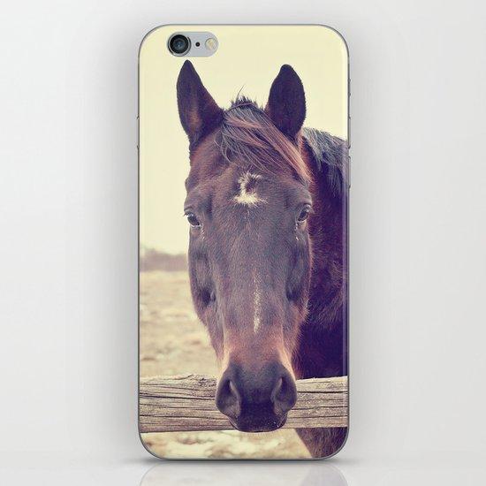 Hello Horse  iPhone & iPod Skin