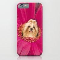Little Pistil iPhone 6 Slim Case