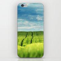 Fields of Green iPhone & iPod Skin