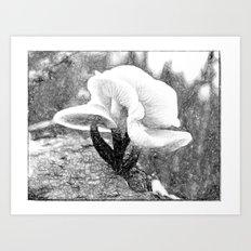 SHRM3 Art Print